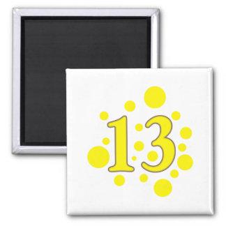 13-dertien magneet