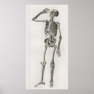 1833 het vintage Skeletachtige Poster van de