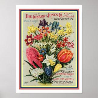 1897 de Dekking 12x16 van de Catalogus van het Poster
