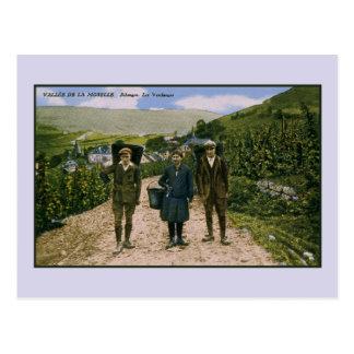 1900 de wijnoogst Schengen Luxemburg van Moezel Briefkaart