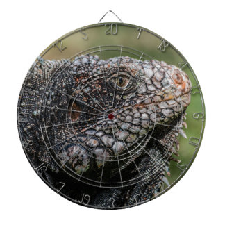 1920px-Iguanidae_head_from_Venezuela Dartbord