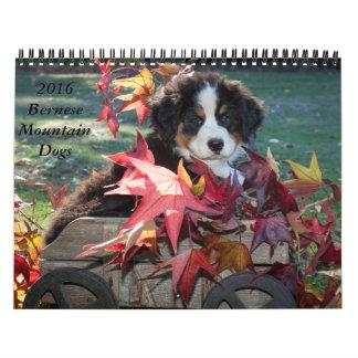 2016 de Kalender van de Hond van de Berg Bernese