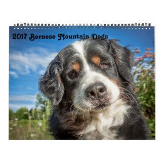 2017 de Kalender van de Honden van de Berg Bernese