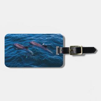2 Dolfijnen Bottlenose - het Label van de Bagage Kofferlabels