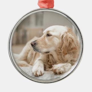 34137641_xxl zilverkleurig rond ornament