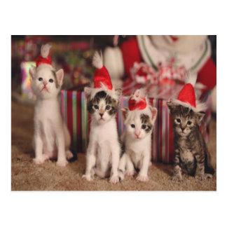 4 de Kerstkaart van katjes Briefkaart