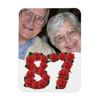 87ste Verjaardag of Nummer 87 de Magneet van de