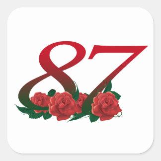 87ste Verjaardag of Nummer 87 Vierkante Sticker