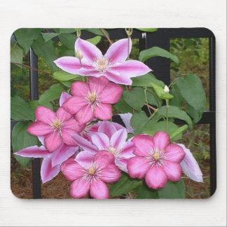 AA roze clematissenbloem mousepad Muismatten