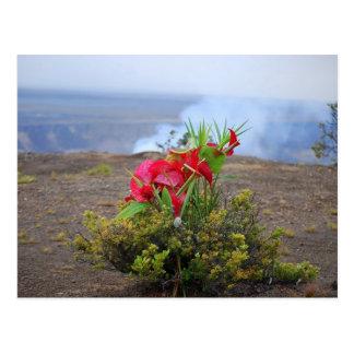 Aanbiedend aan Pele, de Hawaiiaanse Godin van de Briefkaart