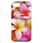 Aangepaste de Bloem van Frangipani Hawaï van iPhone 5 Case