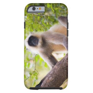 Aap in oerwoud van Nationaal Park Ranthambore Tough iPhone 6 Hoesje