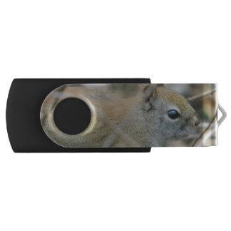 Aardeekhoorn