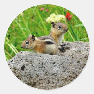 Aardeekhoorns en wildflowers ronde sticker