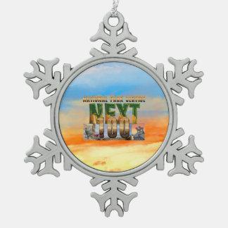 ABH Nationale Parken daarna 100 Tin Sneeuwvlok Ornament