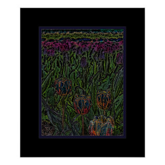 Abstract Oranje Blauw Paars Tulipx Poster 20x24