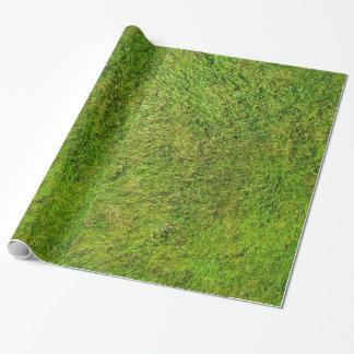 Achtergrond van de Textuur van het Patroon van het Inpakpapier