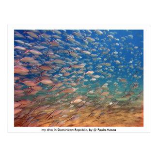 Afbeelding 021, mijn duikvlucht in Dominicaanse Briefkaart