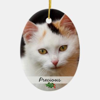Afbeeldingen van Huisdieren, Tweezijdig Ornament