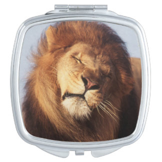 Afrika, Mannelijke Afrikaanse Leeuw (Leeuw Make-up Spiegeltjes