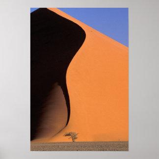 Afrika, Namibië, dat licht op duinen gelijk maakt, Poster
