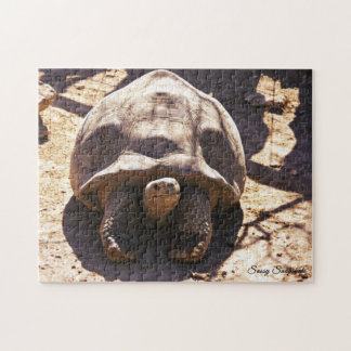 Afrikaanse Aangespoorde Schildpad Puzzel