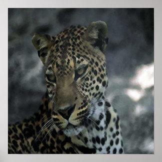Afrikaanse Druk Lepoard Poster