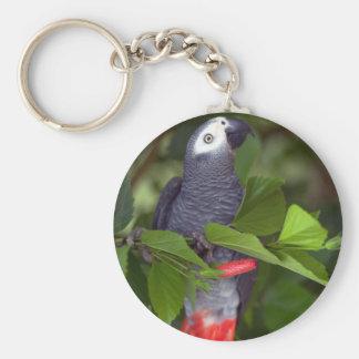 Afrikaanse grijze papegaai sleutelhanger
