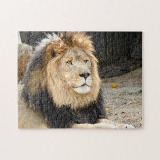 Afrikaanse Leeuw Puzzel