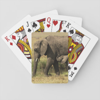 Afrikaanse Olifanten bij waterpool Speelkaarten
