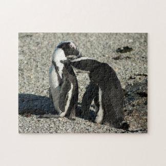 Afrikaanse Pinguïnen die elkaar verzorgen Puzzel