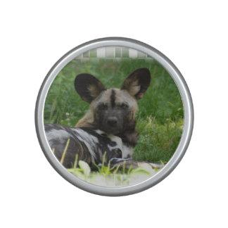 Afrikaanse Wilde Hond Bluetooth Speaker
