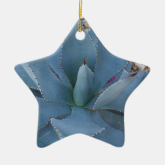 Agave Keramisch Ster Ornament