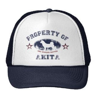 Akita Trucker Petten