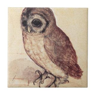 Albrecht Durer de Kleine Tegel van de Uil Tegeltje