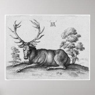 Albrecht Durer Engraving Stag Deer Poster