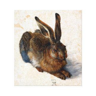 Albrecht Durer Young Hare Canvas Afdrukken