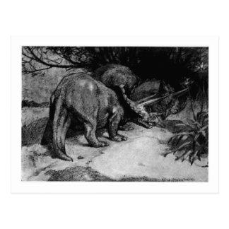 Alice B. Woodward: De kunstbriefkaart van Briefkaart