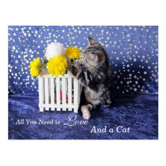 Allen u wenst is Liefde een - en Kat - Lilo Briefkaart