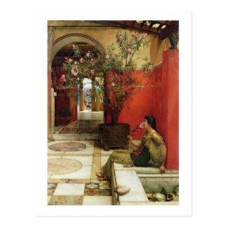 Alma-Tadema   een Oleander, 1882 Briefkaart