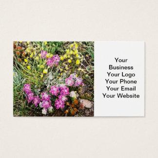 Alpiene Flora Wildflowers