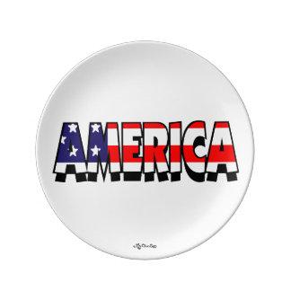 Amerika! 8.5 BORD Porseleinen Bord