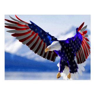 Amerikaans Eagle Briefkaart