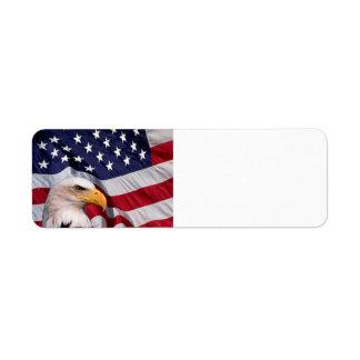 Amerikaans Kaal Eagle met de Achtergrond van de Etiket