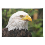 Amerikaans Kaal Eagle Placemat