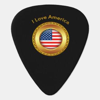 Amerikaanse natievlag met een gouden lijst plectrum