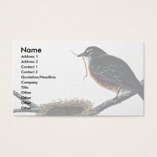 Amerikaanse Robin die een nest bouwen Visitekaartjes