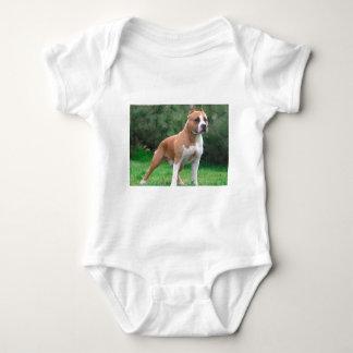 Amerikaanse Staffordshire Terrier Hond Romper
