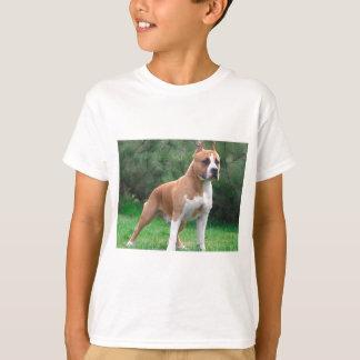 Amerikaanse Staffordshire Terrier Hond T Shirt