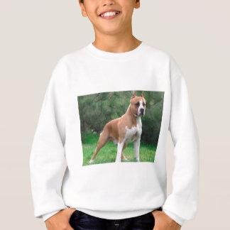 Amerikaanse Staffordshire Terrier Hond Trui